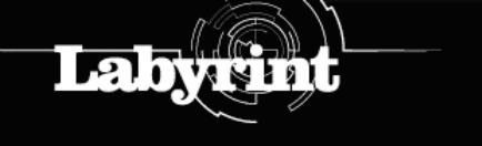 130326 labyrint